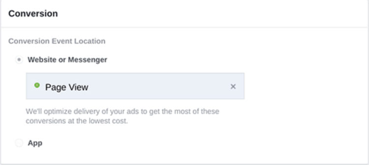 Facebook-Ads_conversion-campaigns.png?mtime=20170805151325#asset:59136:freeHeight